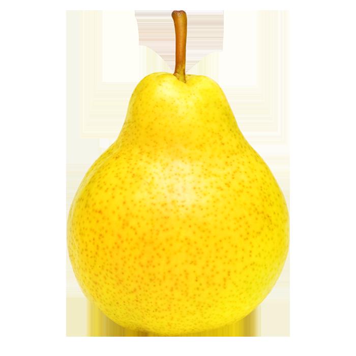 Pera Ercolina
